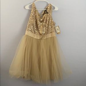Gorgeous gold sequin and tulle dress.